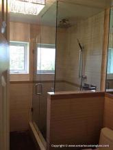 Glass Shower P102